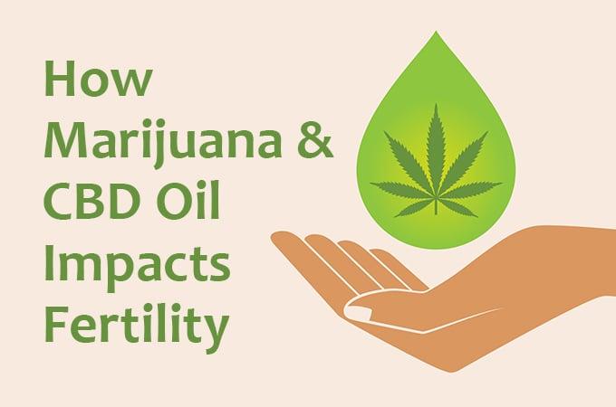 How Does Marijuana and CBD Impact Fertility?