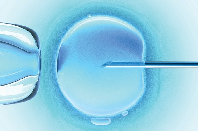 ASRM 2016: Retrieval of More Eggs in IVF Leads to More Babies Born Per Cycle